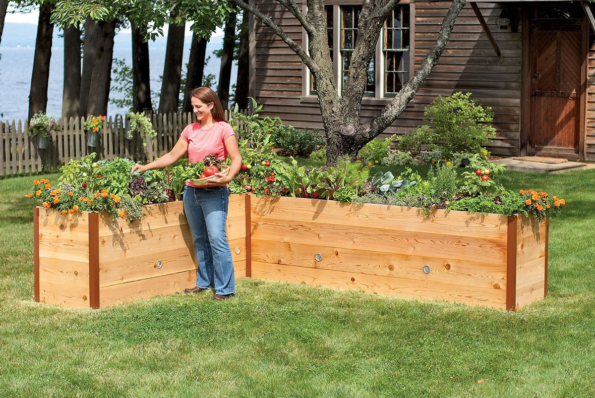 Raised Planter Box Best | Royals Courage : Design Backyard ... on small front garden design ideas, flower bed box ideas, raised bed with bench, outdoor bench ideas, safari box ideas, thanksgiving box ideas, planter box ideas, baby box ideas, cookies box ideas, herb garden design ideas, date box ideas, recycling box ideas, unique container garden ideas, christmas box ideas, backyard herb garden ideas, travel box ideas, tree box ideas, camping box ideas, dessert box ideas, recipe box ideas,