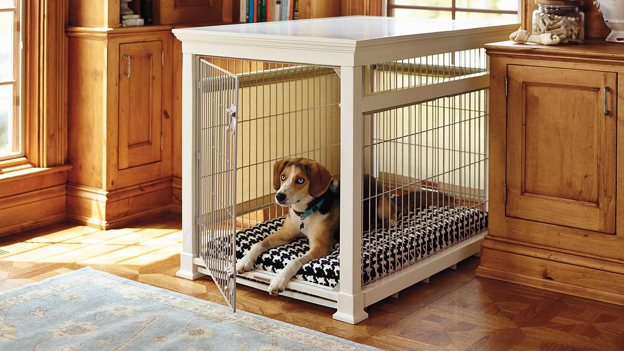 Dog Crate Furniture Paint Royals Courage Stunning And Tremendous